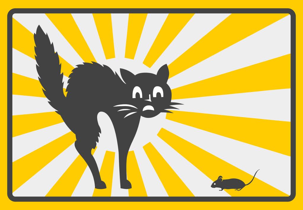 un chat qui a peur, qui stresse fortement à la vue d'une souris. Le chat a les poiles tout hérissés