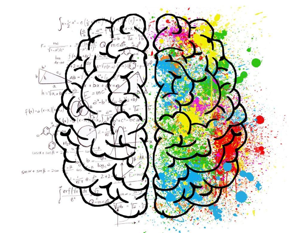 image d'un cerveau en action avec plein de couleurs et de petite notes  indiquant que le cerveau est en action, qu'il analyse son environnement et la situation